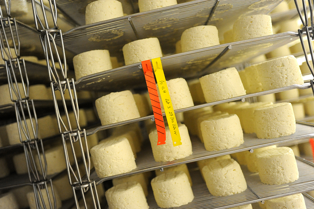 Affinage - Formaticus - Fromagerie Lincet